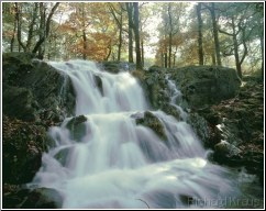 Lakeland Waterfall