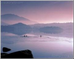 Lakeland Ducks