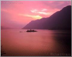 Magenta Lake