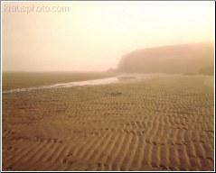 Rippled Sands 4