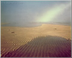 Rippled Sands 1