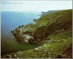 Coastal Moor