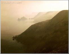 Fog Coming